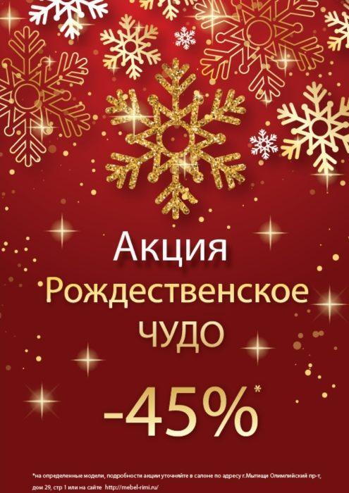 акция«Рождественское Чудо»